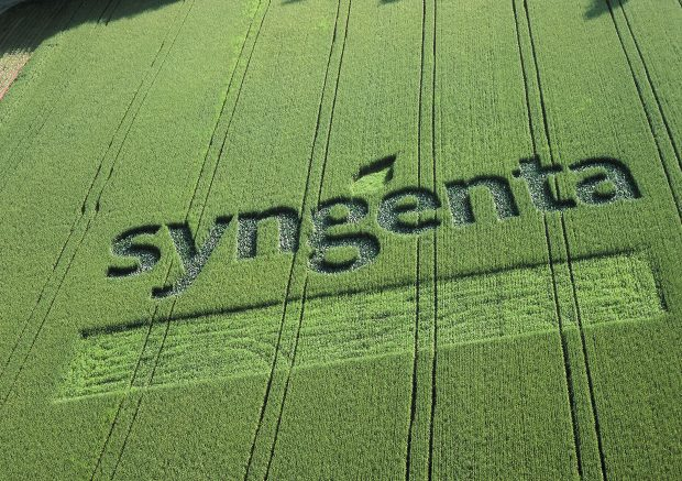 Noch ein Neueinsteiger aus der Schweiz: Syngenta schafft es auf Platz 14. (Bild: Syngenta))
