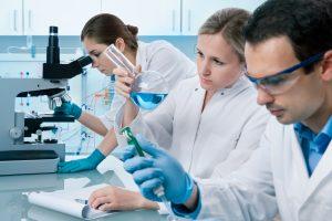 Bayer und Evotec entwickeln Therapien gegen Nierenerkrankungen