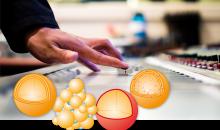 Glatt Ingenieurtechnik zeigt, wie Hersteller auf Basis von Wirbelschicht- und Strahlschichtverfahren bei der Entwicklung neuer Trendzutaten und beim Markteintritt die Nase vorn haben. (Bild: Glatt)