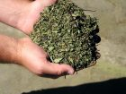 Ein kleinteiliges Produkt wie Tee ist besonders anfällig für Brandereignisse. Bilder: Grecon