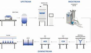 170615_Filtrox_Infografik_Biomanufacturing_Process_Korr_V2