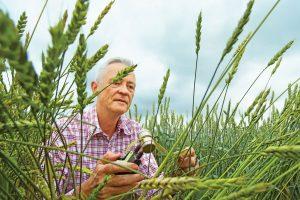 Bayer will die Übernahme von Monsanto am 7. Juni 2018 abschließen. (Bild: Bayer)