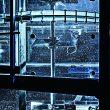 Das Boden-Magnetrührwerk sorgt auch in Bioreaktoren mit großem Volumen für eine effiziente Durchmischung. (Bilder: Zeta)