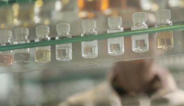 Givaudan investiert in die Riechstoff-Entwicklung und -Produktion. (Bild: Givaudan)