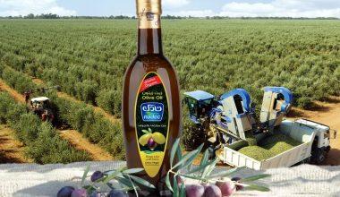 Die Nadec-Group und GEA haben einen Vertrag über die modernste Olivenölgewinnung Asiens abgeschlossen. (Bild: Nadec)