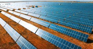 Mit dem 2,7 km² großen Solarpark in North Carolina will Novo Nordisk sein US-Geschäft mit regenerativer Elektrizität versorgen. (Bild: Novo Nordisk)