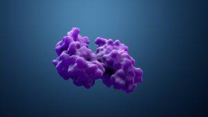 Die Technologie ermöglicht den gezielten Abbau von Proteinen. (Bild: Design Cells – AdobeStock)