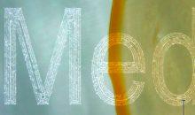 Der mittels Lasermarkierung erstellte Schriftzug im Glas bleibt leserlich, auch wenn er teilweise mit Flüssigkeit bedeckt ist. (Bilder: Medizinisches Laserzentrum Lübeck)
