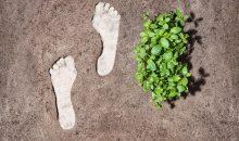"""Viele Unternehmen suchen derzeit nach Wegen, ihren """"Carbon-Footprint"""" zu reduzieren. (Bild: Evonik)"""