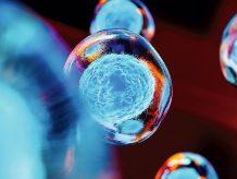 Bild: pinkeyes ‒ AdobeStock